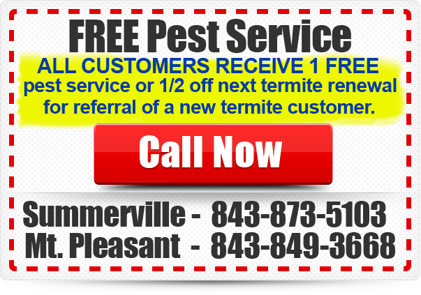 NewTec-Coupon-FREE-Service-All-Customers